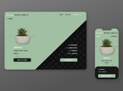E-commerce Checkout Page Mockup