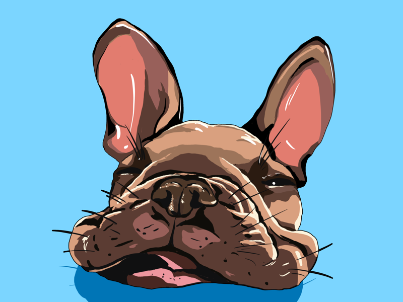 Puppy puppy dog design vector illustration