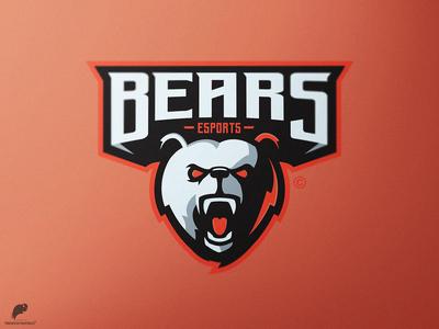 Bear's Mascot Logo Primary