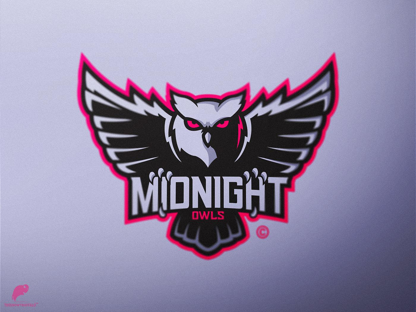 Owl Mascot Logo lettering type typography logo illustrator illustration identity icon design branding