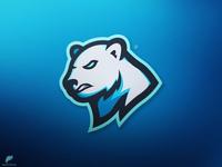Polar Bear Mascot Logo Secondary