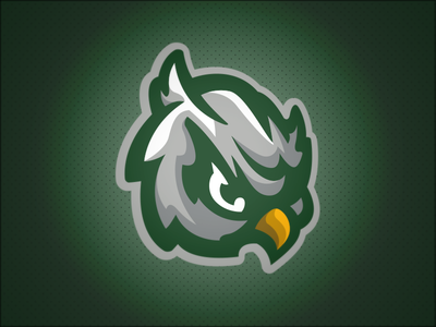 Forest View Owls // Mascot