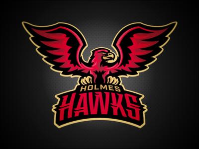 Holmes Hawks // Primary