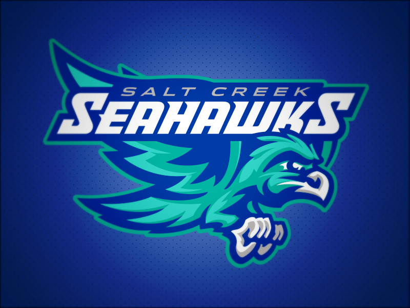 Salt Creek Seahawks // Primary bird hawks hawk seahawks seahawk mascot school elementary
