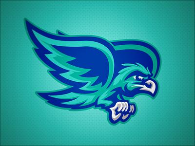 Salt Creek Seahawks // Mascot bird hawks hawk seahawks seahawk mascot school elementary