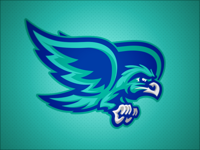 Salt Creek Seahawks // Mascot