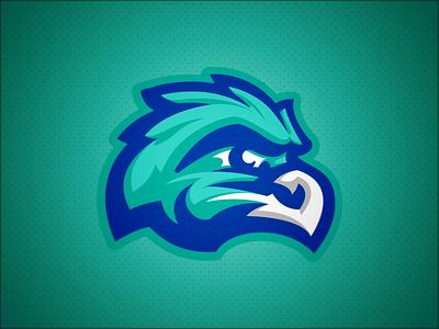 Salt Creek Seahawks // Alternate bird hawks hawk seahawks seahawk mascot school elementary