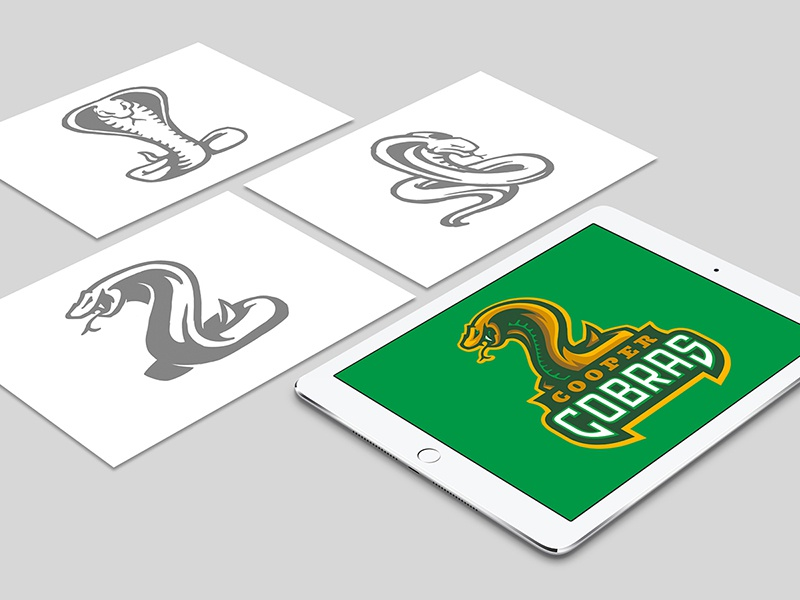 CCSD21 Project Intro school process mascot team sports snake cobras sketch