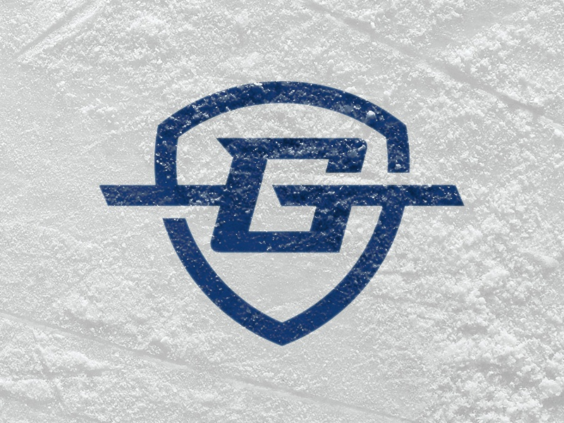 Goal Line Sportswear brand snow ice bold branding logo hockey sports shield line
