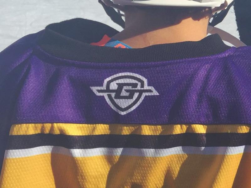 Goal Line Sportswear - Use brand snow ice bold branding logo hockey sports shield line