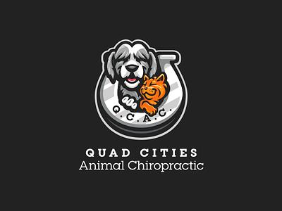 Quad Cities Animal Chiropractic chiropractic animals animal shoe horse tabby cat sheepdog dog