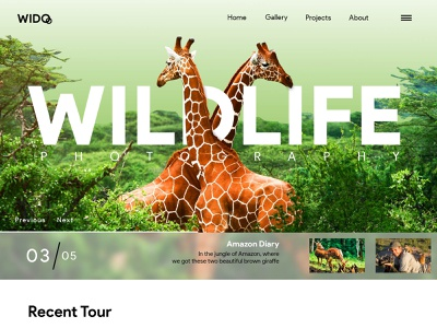 Wildlife Photography 1.0 | Photography | Wildlife | Cameras 3d giraffe wido amazon forest wild wildlife photography wildlife art photography wildlife design techo aj