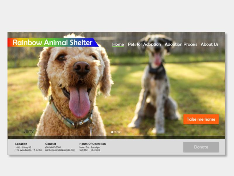 Rainbow Animal Shelter non-profit animals design uxui webdesign ui ux