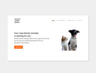 Rainbow Animal Shelter Landing Page animals design landing page website uxui