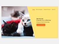 RAS animals uxui web design