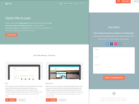 Eski - website design and development