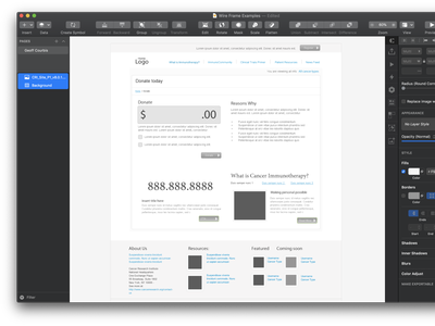 Donation Page sketch vector ui wireframe mobile design website