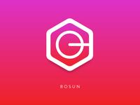 Bosun logo
