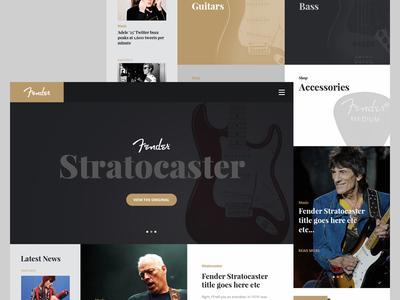 Fender Concept Landing Page page landing ux ui design website web guitar fender