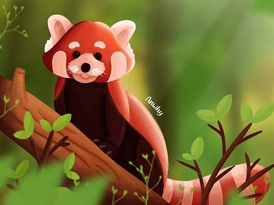 Red Panda-Animal Illustration animal illustration redpanda character illustrator illustration logo branding vector design