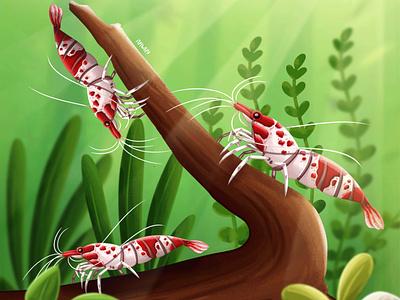 Litle Shrimp painting illustrator illustration vector