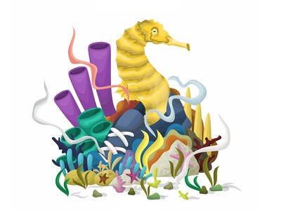 Sea Horse Illustration