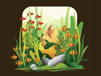 Aquascape Illustration