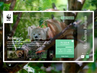 WWF Red Panda web green animals wwf webdesign prototyping design ux ui desktop