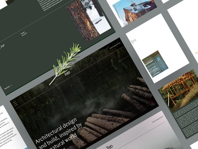 Architect Website typography logo mobile website website designing branding website web design web ux design