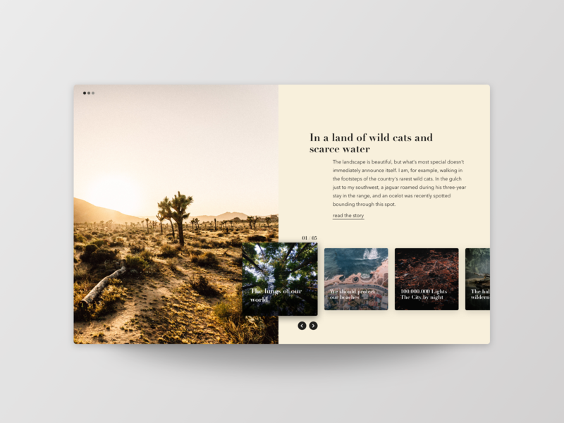 Article Slider image layout desert enviroment nature overlay slider magazine article typography frankfurt ui ux design uichallenge website