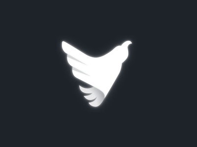 Beyond Space Flight Logo