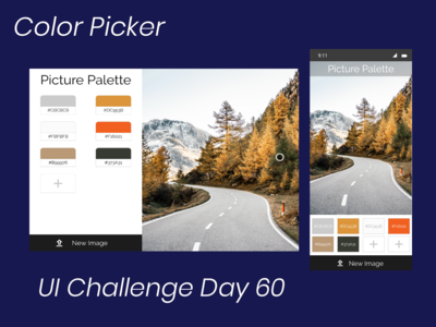 Color Picker Daily UI Challenge Day 60