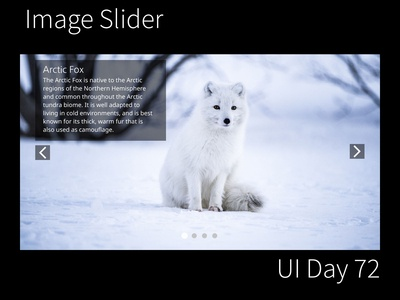 Image Slider Daily UI Challenge Day 72