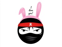 Ninja Bunny Cooper Inspired
