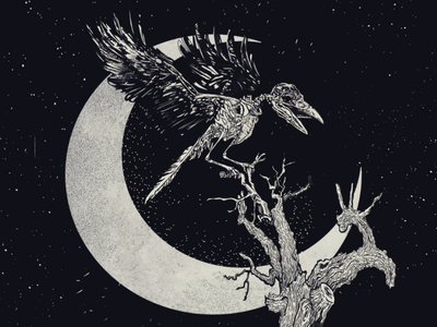 Nevermore stars moon skeleton concept creative design print art poetry horror macabre edgar allan poe raven occult dark ink drawing sketch blackandwhite illustration
