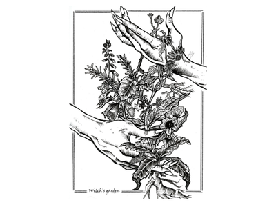 The Witch's garden apothecary pen fineliner sketch witchs garden drawing ink herbs garden witch illustration black and white
