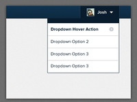 Dropdown versions