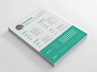 Resume CV cv resume resume design job resume resume cv msword cv vector cv curriculum vitae stationary print template job profile job application