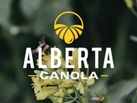 Alberta Canola