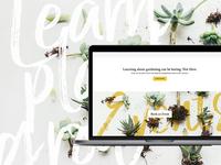 Learn Plant Grow Wordpress build