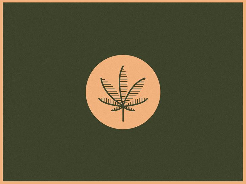 Cannabis leaf brand design cannabis design cannabis logo illustration leaf branding design icon identity logo cannabis branding cannabis