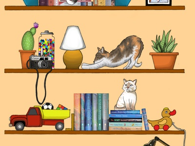Cats On Shelves (2)