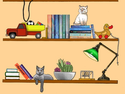 Cats On Shelves (3)