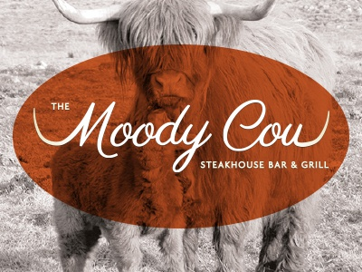 Moody Cow Initial Design 2 v2 logo design cow steak rotisserie grill horns logo restaurant