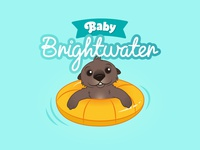 Baby Bright Water - Logo and Illustration