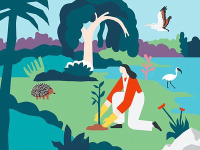 Orana Community landscape plants growing illustration community