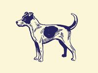 Waggin' The Dog