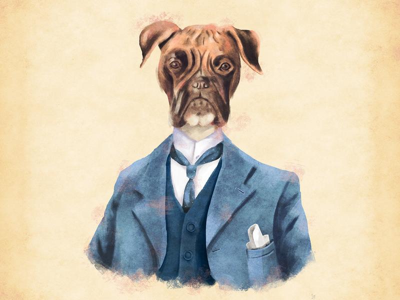 Señor Boxer sketch characterdesign drawing photoshop digitalart illustration señor mr perro boxers dog illustration dog lover dog boxer