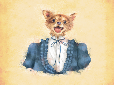 Mrs. Chihuahua rich misses painting doodle sketch characterdesign drawing photoshop digitalart illustration perro dog lover dog chihuahua