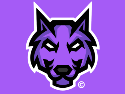 WOLF // DESIGN icon graphic design flat esports design clean branding brand blue ui illustration art